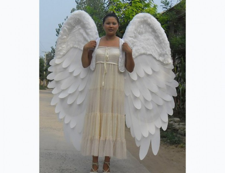 Как сделать крылья своими руками без перьев